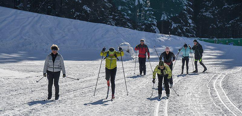 zimní sporty - běžky
